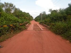 Rodovia PA-407 com detalhe de uma ponte e da floresta ciliar