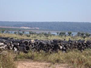 Perfil de um pátio de toras e ao fundo o canteiro de obras da barragem UHE Colider